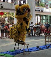 Acrobatic Lion Dance