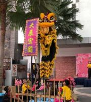 Acrobatic Lion Dance: 9.2.2019