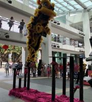 Lion Dance on Stilts